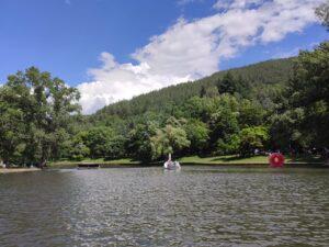 park bachinovo